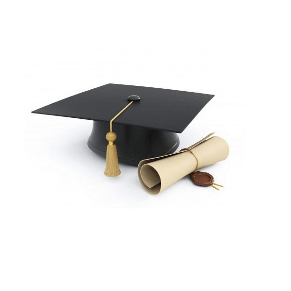 diploma_lg