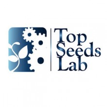 topseed_md
