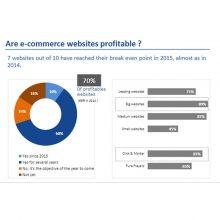 rentabilidadecommerce_md